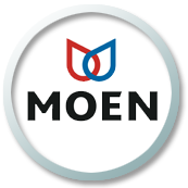 Moen tankless water heaters